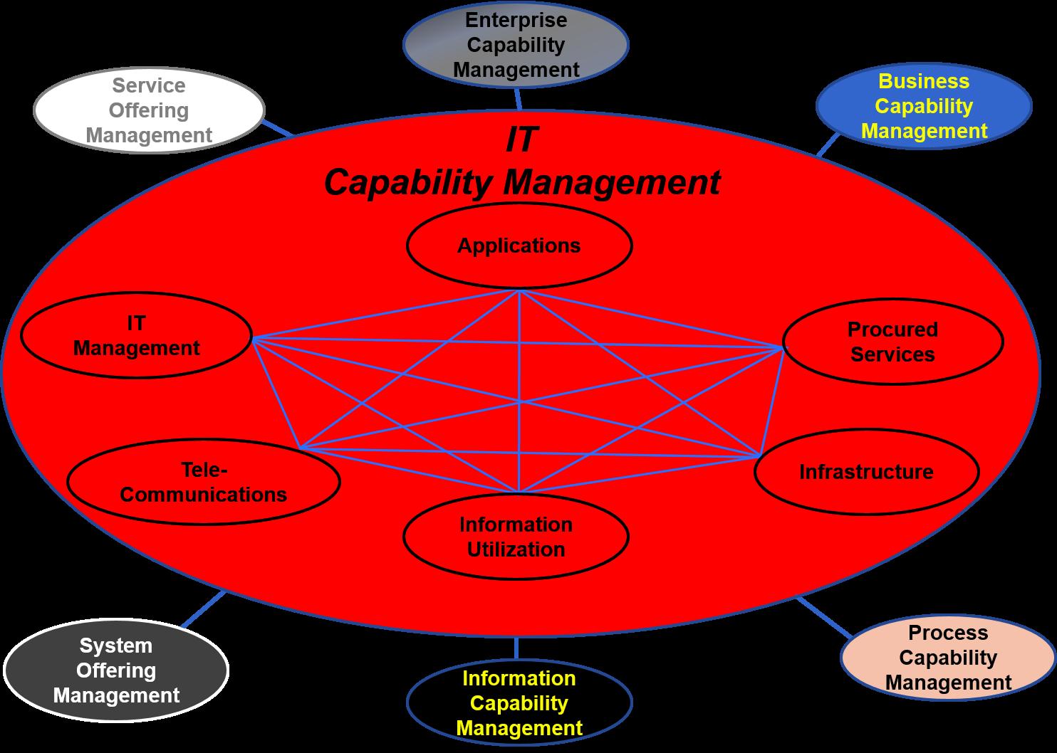 IT Capability Management